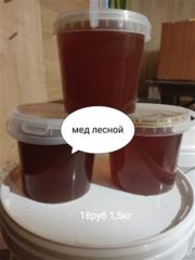 Продаю мед лесной,  луговой,  со своей пасеки